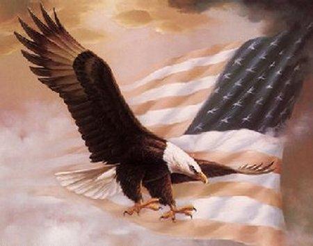 Bald Eagle and Banner