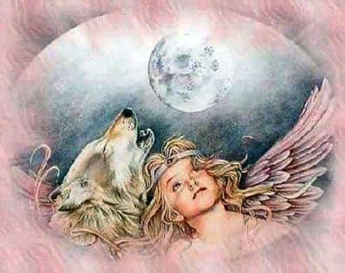 The Angel & The Wolf